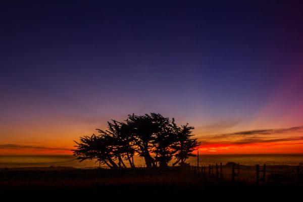 Bodega Sunset - November 2016 - Lo Res (1 of 1)