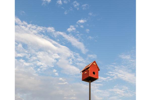 Carneros Birdhouse