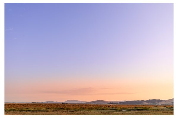 Mt. Tam and the Marshes