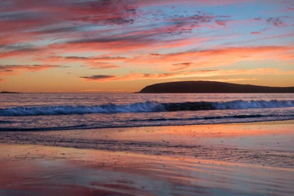 Bodega Bay Beach in November (1 of 1)