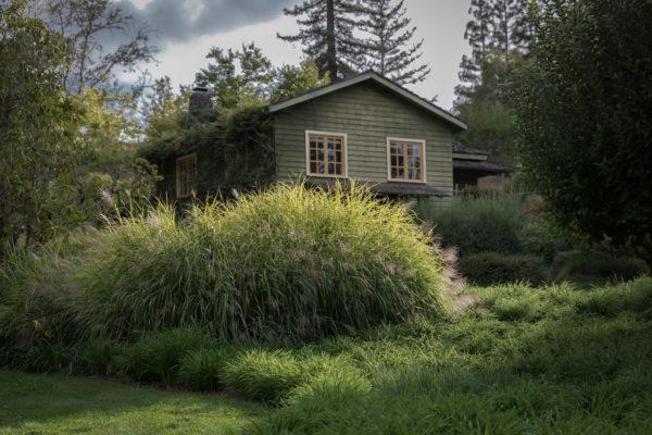 Wild Iris Retreat Guest Cottage - Web (1 of 1)