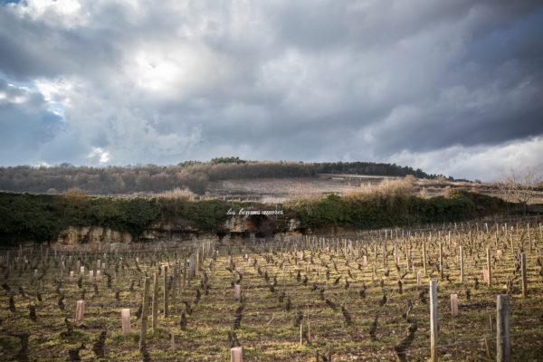 France 2018 - Burgundy (256 of 264)