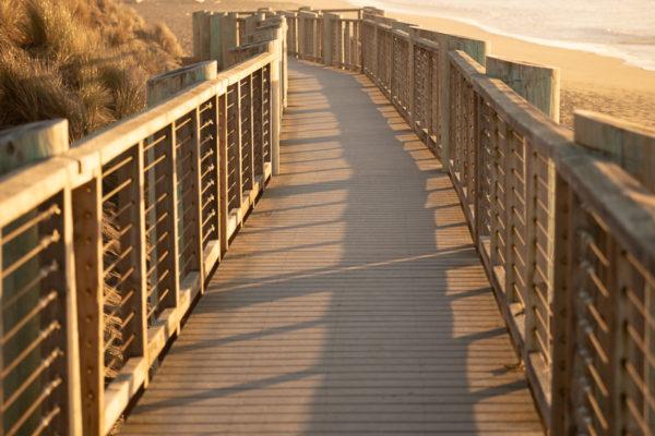 Bodega Dunes - Web Size (1 of 1)