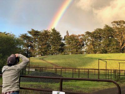 Tomales Rainbow