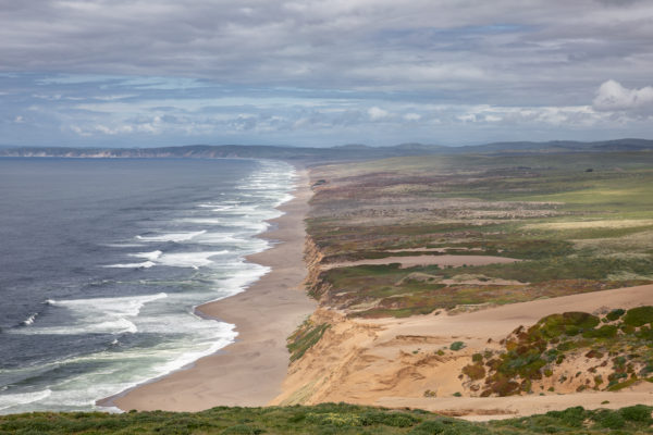 Point Reyes Beach - Web Size (1 of 1)