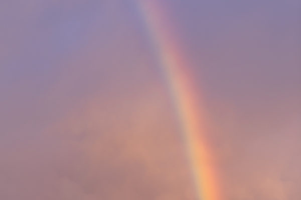 Two Rock Valley Rainbow - Vertical - Web Size (1 of 1)