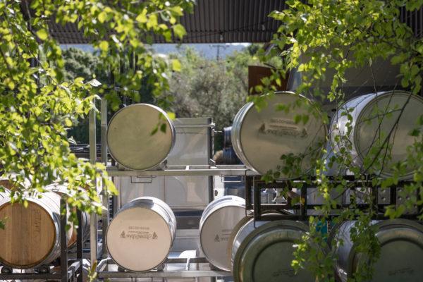Balo Winery Barrels - Web Size (1 of 1)