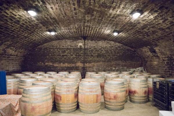 France 2018 - Burgundy (126 of 264)