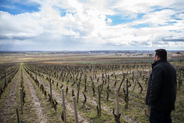 France 2018 - Burgundy (142 of 264)