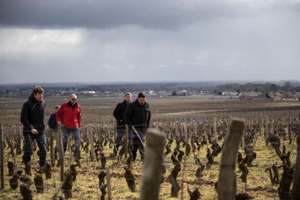 France 2018 - Burgundy (148 of 264)