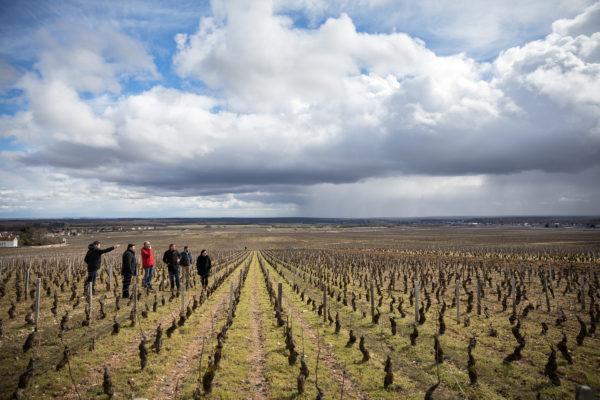 France 2018 - Burgundy (150 of 264)
