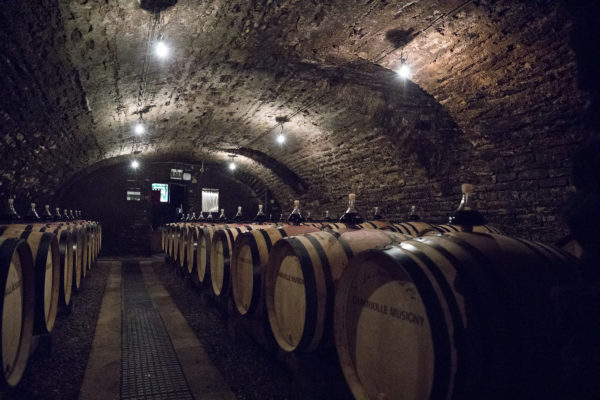 France 2018 - Burgundy (24 of 264)