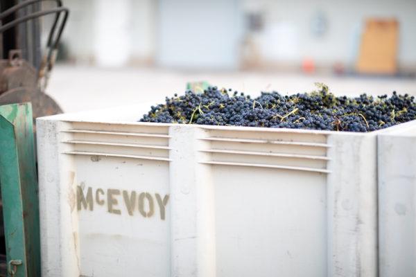 Darling Wines - Petaluma Gap Harvest 2018 - Small Size (66 of 91)