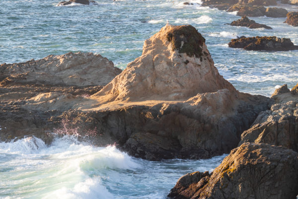 Indian Summer at the Bodega Head 2018 - Web Size (1 of 1)