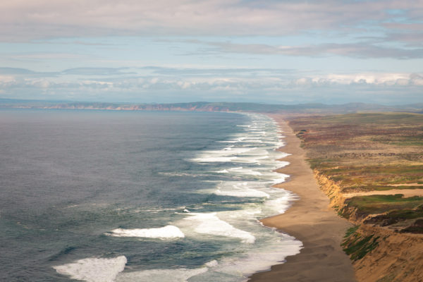 Spring Colors at Point Reyes Beach 2018 - Web Size (1 of 1)
