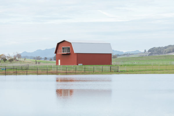 A classic red farmhouse or barn sits within a soft green pasture next to a still blue pond.