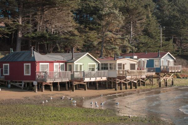 Nick's Cove (1 of 1)